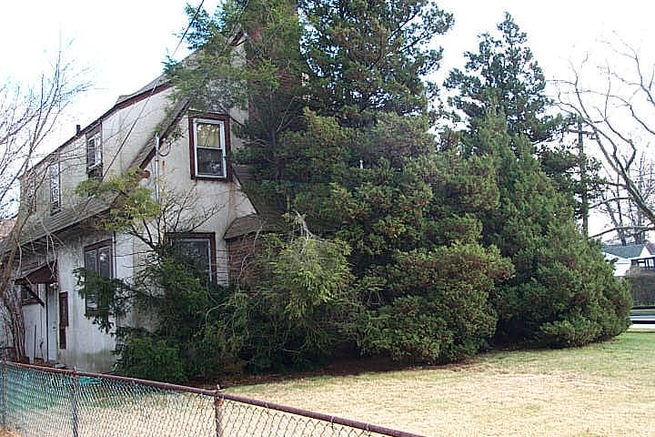 Older home in East Rockaway, NY with overgrown trees covering front door