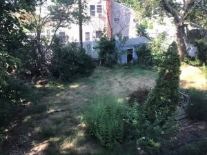 We Buy Houses: Bethpage exterior side yard before shot
